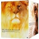 BBC ワイルド·ライフ エクスクルーシブ  DVD Box
